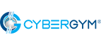 Strategic Cyber Holdings LLC